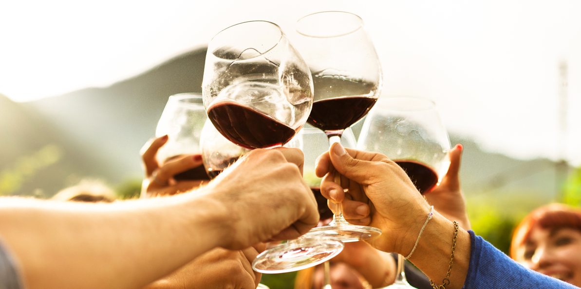 Friends Raising Their Wine Glasses in a Toast!