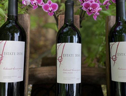 SPRING SALE WINE SPOTLIGHT – 2014 and 2015 Cabernet Sauvignons